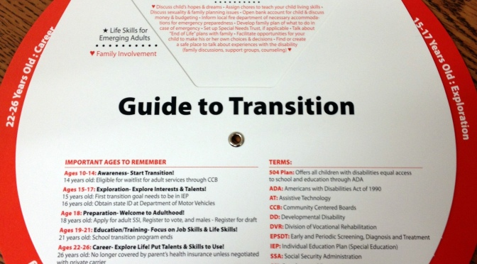 Guide to Transition: New tool available